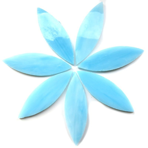 Large Petals/Leaves: 0.8 x 2.3 inch